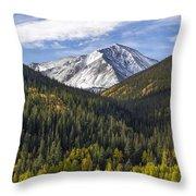 Torreys Peak  Throw Pillow