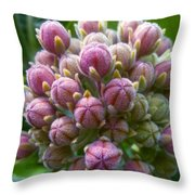 Touch.  Throw Pillow