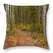 Trail In Golden Aspen Forest Throw Pillow