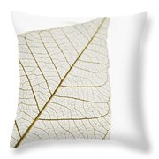 Transparent Leaf Throw Pillow
