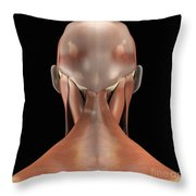 Trapezius Muscle Throw Pillow