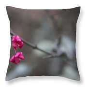 Tree Seed Capsule Pod Bursts Throw Pillow