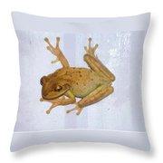Treefrog Throw Pillow