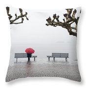 Trees And Benches Throw Pillow