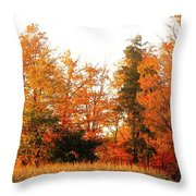 Trees Of Fall Throw Pillow
