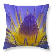 Tropic Water Lily 16 Throw Pillow