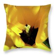 Tulip Close Up Throw Pillow