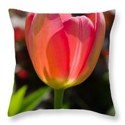 Tulip On The Green Background Throw Pillow