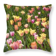 Tulips At Dallas Arboretum V92 Throw Pillow