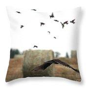 Turkey Vulture Takes Flight Throw Pillow