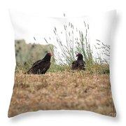 Turkey Vultures Throw Pillow