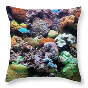 Underwater View Throw Pillow