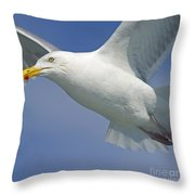 Up Close And Personal... Throw Pillow