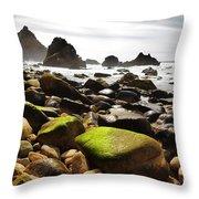 Ursa Beach Throw Pillow