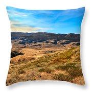 Vast View Throw Pillow