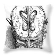 Vesalius: Brain, 1543 Throw Pillow