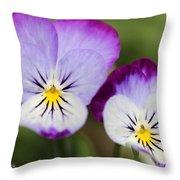 Viola Named Sorbet Lemon Blueberry Swirl Throw Pillow
