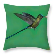 Violet-tailed Sylph Throw Pillow