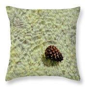 Visual Gift Throw Pillow