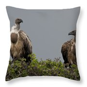 Vultures With Full Crops Throw Pillow