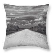Wagon Wheel Road Bw Throw Pillow