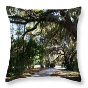 Walking Path Throw Pillow