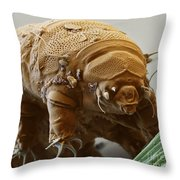 Water Bear Throw Pillow