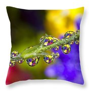 Water Drops On A Flower Stem Throw Pillow