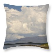 Westport Bay Throw Pillow