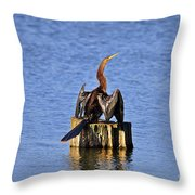 Wet Wings Throw Pillow
