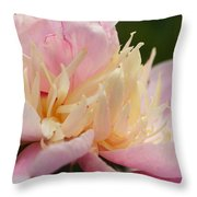 White And Pink Peony Throw Pillow