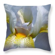 White And Yellow Iris 2 Throw Pillow