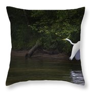 White Egret In Flight Throw Pillow