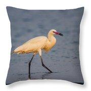 White Morph Redish Egret Throw Pillow