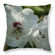 White Rhododendron Blossom Throw Pillow