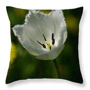 White Tulip On The Green Background Throw Pillow