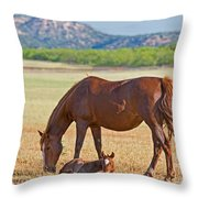 Wild Horses Mother And Foal Throw Pillow
