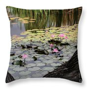 Wild Water Lilies In The River Throw Pillow