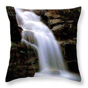 Wildcat Falls Throw Pillow