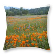Wildflower Wonderland 10 Throw Pillow