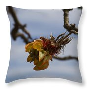 Wiliwili Flowers - Erythrina Sandwicensis - Kahikinui Maui Hawaii Throw Pillow