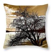 Willow On Silver Lake Throw Pillow