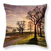 Winter Morning Shadows / Maynooth Throw Pillow