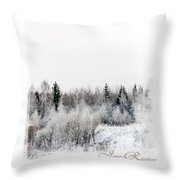 Winter Wonderland. Elegant Knickknacks From Jennyrainbow Throw Pillow by Jenny Rainbow