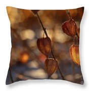 Winter's Light Throw Pillow