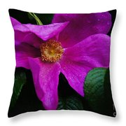 Withered Rose Throw Pillow