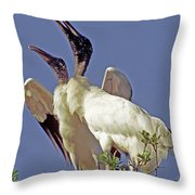 Wood Stork Courtship Display Throw Pillow