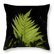 Woodland Fern Throw Pillow