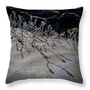 Woolly Willow Growing Wild In The Black Throw Pillow