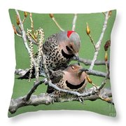 Yellow-shafted Northern Flickers Throw Pillow